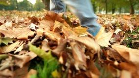 Los pies del niño que caminan con el otoño caido se van CON EL SONIDO almacen de video
