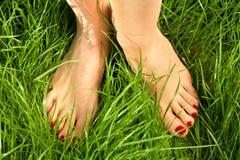 Los pies descubiertos de la mujer Fotografía de archivo libre de regalías