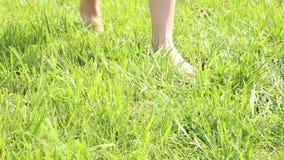 Los pies desnudos de la mujer que caminan sobre campo de hierba verde, ella zapatos que lanzan en hierba almacen de metraje de vídeo