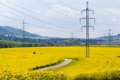 Los pilones de alto voltaje de la electricidad en la violación de semilla oleaginosa amarilla colocan Imagen de archivo libre de regalías