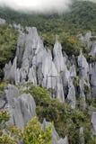 Los pináculos Imagen de archivo