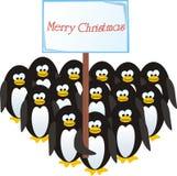 Los pingüinos felicitan por la Navidad Foto de archivo libre de regalías