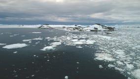 Los pingüinos que saltan en el océano de la Antártida Tiro aéreo metrajes