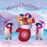 Los pingüinos y la manopla de la Navidad Fotografía de archivo libre de regalías