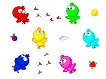 Los pájaros coloridos aislaron Imagen de archivo libre de regalías