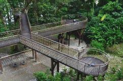 Los plaforms de la observación cerca del visitante se centran en la zona de recreo del bosque del Estado de Zhiben, Taiwán Imagenes de archivo