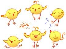 Los pollos divertidos stock de ilustración