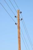 Los polos con los soportes y los alambres para la transmisión de la electricidad Imagen de archivo libre de regalías