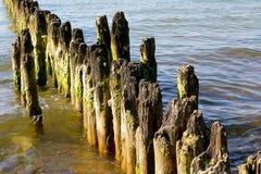 Los polos de madera se pegan hacia fuera del agua Imágenes de archivo libres de regalías