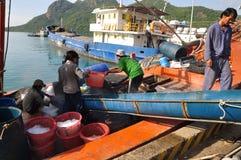 Los porteros están afeitando el hielo en el puerto local de la isla de Dao de la estafa de Vietnam Foto de archivo libre de regalías