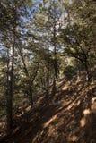 Los Ports Park Natural Royalty Free Stock Image