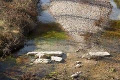 Los Ports Park Natural Royalty Free Stock Images