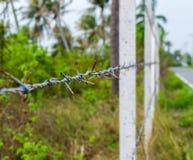 Los posts concretos alineados construyen una cerca del alambre de púas en la selva Imagen de archivo