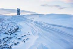 Los posts de la erosión en la meseta Manpupuner, Rusia fotos de archivo
