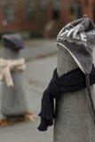 Los posts se vistieron correctamente para el invierno en Seattle, Washington 14 Fotografía de archivo
