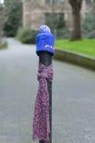 Los posts se vistieron correctamente para el invierno en Seattle, Washington 21 Foto de archivo libre de regalías
