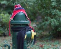 Los posts se vistieron correctamente para el invierno en Seattle, Washington 19 Foto de archivo