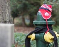 Los posts se vistieron correctamente para el invierno en Seattle, Washington 20 Imagen de archivo libre de regalías