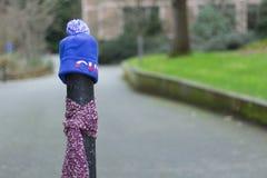 Los posts se vistieron correctamente para el invierno en Seattle, Washington 22 Fotos de archivo libres de regalías
