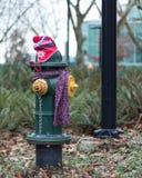Los posts se vistieron correctamente para el invierno en Seattle, Washington 2 Fotos de archivo