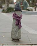 Los posts se vistieron correctamente para el invierno en Seattle, Washington 6 Foto de archivo