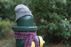 Los posts se vistieron correctamente para el invierno en Seattle, Washington 16 Fotografía de archivo