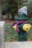 Los posts se vistieron correctamente para el invierno en Seattle, Washington 18 Fotos de archivo