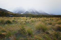 Los prados de oro cubiertos la mayor parte de ajardinan a lo largo de rastro del valle de la puta Imagen de archivo libre de regalías
