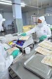 Los productos finales de los mariscos se preparan para pesar y empaquetar al vacío en una fábrica de los mariscos en Vietnam Fotografía de archivo