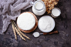 Los productos lácteos ordeñan, requesón, crema agria y trigo Imagen de archivo libre de regalías