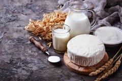 Los productos lácteos ordeñan, requesón, crema agria y trigo Imágenes de archivo libres de regalías