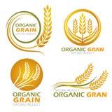 Los productos orgánicos del grano del arroz de arroz del círculo del oro y la bandera sana de la comida firman diseño determinado libre illustration