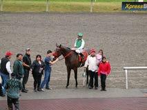 Los propietarios del jinete y del caballo presentan con el caballo Foto de archivo libre de regalías