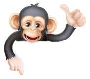 Los pulgares suben la muestra del chimpancé del mono Fotos de archivo libres de regalías