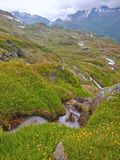 Los rápidos en la montaña fluyen en el prado de la primavera de las montañas Tiempo frío y lluvioso Foto de archivo libre de regalías