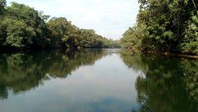 Los ríos verdes del mA del mundo Foto de archivo