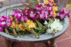 Los ramos de orquídeas se han depositado en un cuenco (Tailandia) Fotografía de archivo libre de regalías