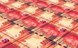 Los randes sudafricanos cargan en cuenta el fondo de las pilas Imágenes de archivo libres de regalías