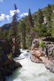 Los rapids de la piscina en montañas rocosas Foto de archivo libre de regalías