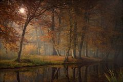 Los rayos de la luz pasados Fotografía de archivo libre de regalías