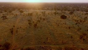 Los rayos de la puesta del sol iluminan la sabana de Namibia almacen de video