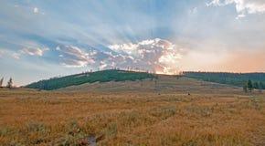 Los rayos de sol y los rayos solares con puesta del sol se nublan en Hayden Valley en el parque nacional de Yellowstone en Wyomin Foto de archivo libre de regalías
