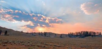 Los rayos de sol y los rayos solares con puesta del sol se nublan en Hayden Valley en el parque nacional de Yellowstone en Wyomin Fotos de archivo libres de regalías