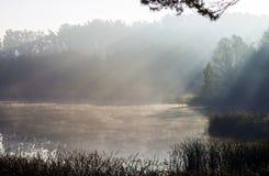 Los rayos del sol por la mañana que brilla a través de la niebla sobre el lago fotografía de archivo libre de regalías