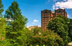 Los árboles y un edificio en la colina del druida parquean, en Baltimore, Maryland Fotos de archivo
