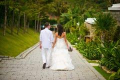 Los recienes casados caminan en el parque en las zonas tropicales, llevando a cabo las manos imagenes de archivo