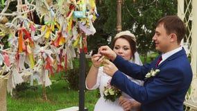 Los recienes casados cuelgan una cerradura en el árbol del amor almacen de video