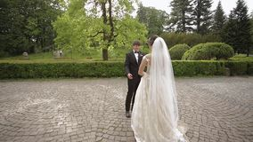 Los recienes casados están caminando en el parque cerca del castillo grande Novia hermosa con el novio hermoso almacen de video