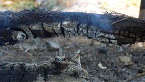 Los registros de madera arden almacen de video