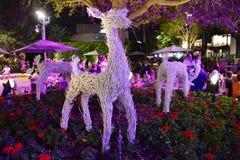 Los renos hechos con las ramas pintaron blanco, en macizo de flores colorido en el área de Buena Vista del lago foto de archivo